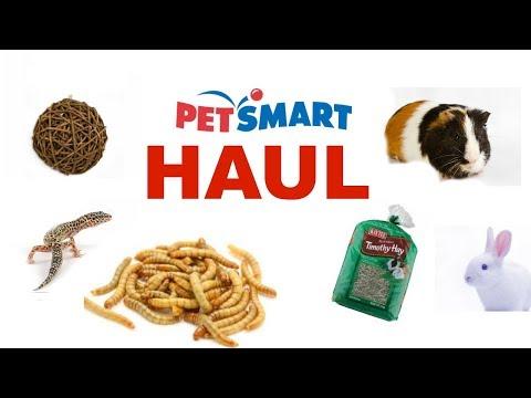 PETSMART HAUL (HUGE)