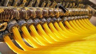 Amazing Pasta Machine - Food Processing Machine