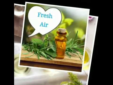 Janvi Herbs Essential Oils India and Wholesale Supplier