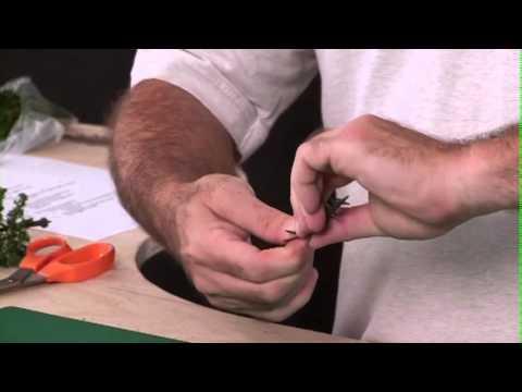 Making Pine Trees Using Plastic Armatures