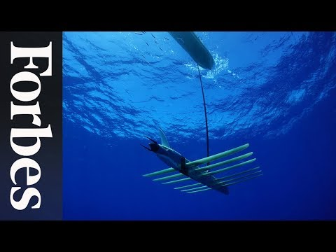 A Wave-Powered Robot That Researches The Sea | Forbes