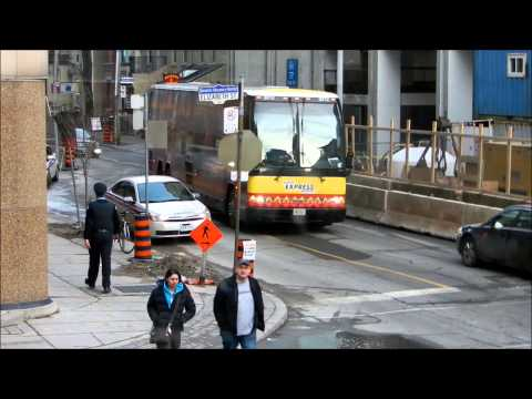 Will Toronto Meter Maid Get A Parking Ticket?