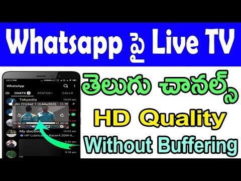Whatsapp ఉపయోగిస్తూ లైవ్ టీవీ చూడండి | live tv on whatsapp | live tv in whatsapp | tekpedia