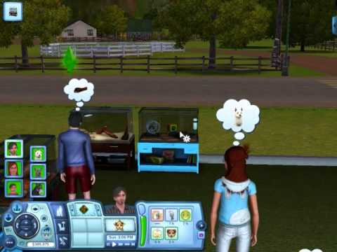 The Sims 3 Pets: Minor Pets
