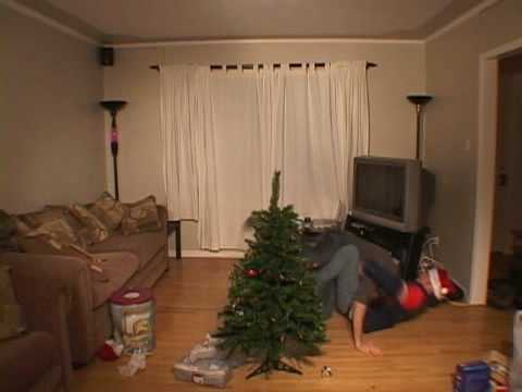 Trimming the Christmas Tree in Calgary