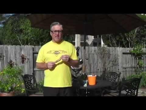 Start Your Sweet Potato Slips (vines) in winter