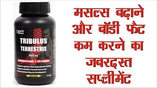 Bodybuilding Supplement to increase Muscle Growth, Energy & Stamina - Tribulus (Review)