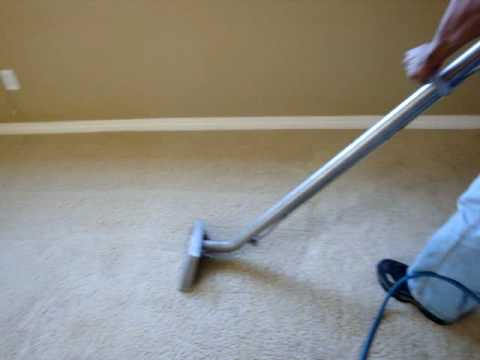 Pet Stain Removal | Steam Carpet Cleaning | Summit Carpet Cleaning Tampa