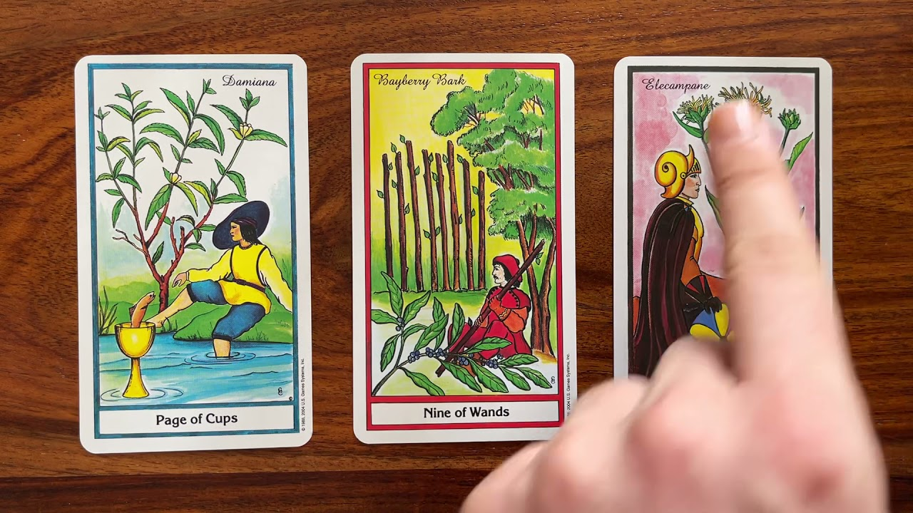Celebrate the good things in life! 31 July 2021 Your Daily Tarot Reading with Gregory Scott