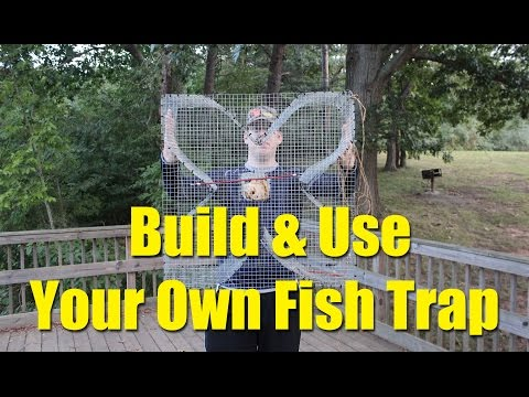 Build a fish trap and catch catfish bait - four leaf clover fish trap for blue gill and bream