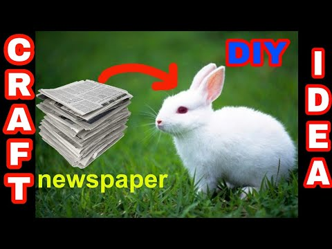 How to make rabbit with cotton using newspaper | Gk craft