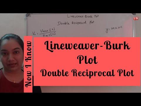 Lineweaver Burk Plot – Double Reciprocal Plot