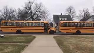 ყვითელი ავტობუსები, სკოლა ამერიკაში ***როგორ ცხოვრობს ამერიკა