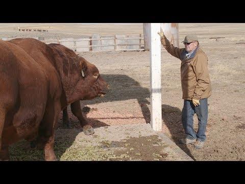 Water Runs Dry in Wyoming Coal Country