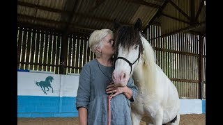 Bournemouth University research looks at the impact of horses on mental health