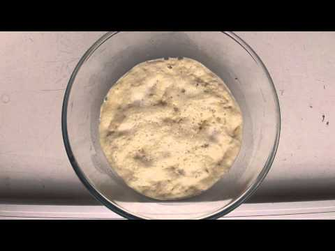 Yeast growing - time lapse HD