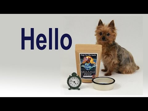 How to make Dogs For The Earth Organic Dehydrated Dog Food