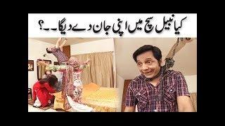 Kiya Nabeel Sach Mein Jaan De Dega..?
