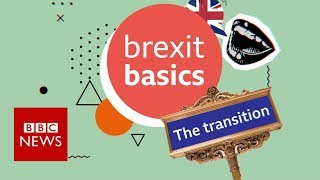 Brexit: The transition period explained - BBC News