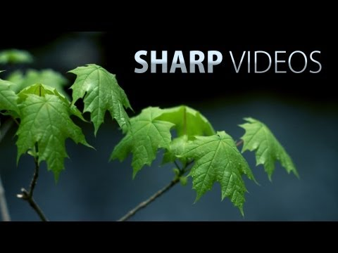 How to get sharp & detailed videos! DSLR video tutorial