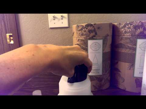 Scentsy Aromatherapy Diffusers and Oils - Part 1