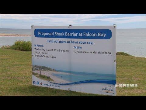 Shark Protection | 9 News Perth