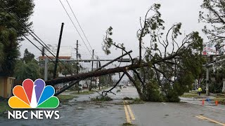 Scenes From Hurricane Michael