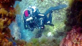 Scuba Diving Women