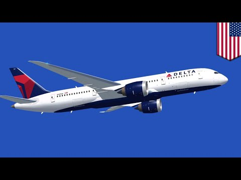 Delta passengers: Strangers who met on Delta flight cited for being too friendly - TomoNews