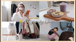 A DAY IN MY LIFE 🇰🇷 GRWM + RECENT ACTIVITIES   Erna Limdaugh