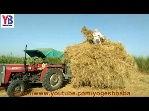 Women Tractors Drive Agriculture farmer technology in farm Agriculture tractor