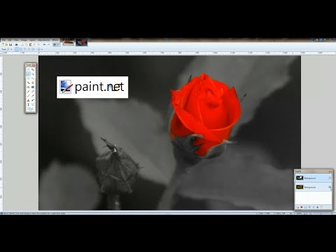 Change Object Color and Expose Color from BW Background in Paint.NET