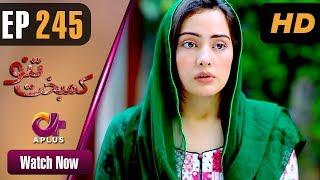 Drama | Kambakht Tanno - Episode 245 | Aplus ᴴᴰ Dramas | Tanvir Jamal, Sadaf Ashaan