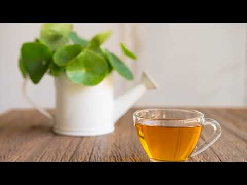 Chinese Herb – Gotu Kola For Appendicitis- How Often To Use- Natural Home Remedy For Appendicitis