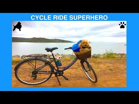 CYCLE RIDE ROSS RIVER DAM TOWNSVILLE  - DIY Fun & Dog Food by Cooking For Dogs