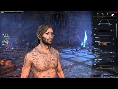 Elder Scrolls Online Character Creation - Wood Elf (In Depth ESO Character Customization Review)