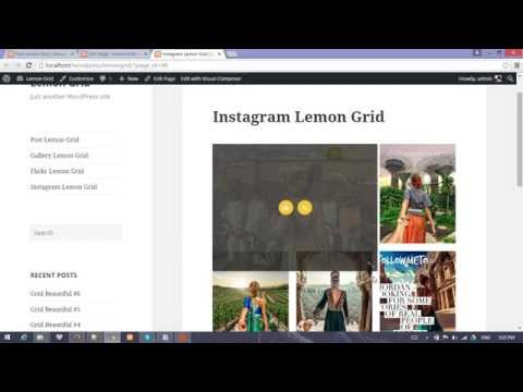 Wordpress Instagram Lemon Grid