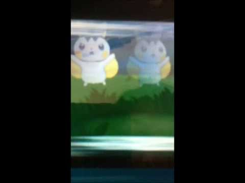 Ombre Chacripan# capture de emolga shiney dans pokemon X par chance