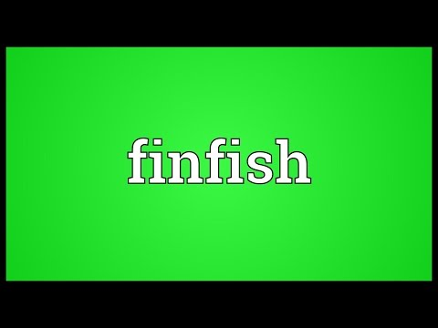 Finfish Meaning
