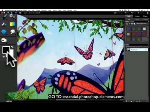 Photoshop Elements Eyedropper Tool