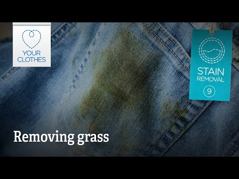 Stain removal: how to remove grass stains from clothes