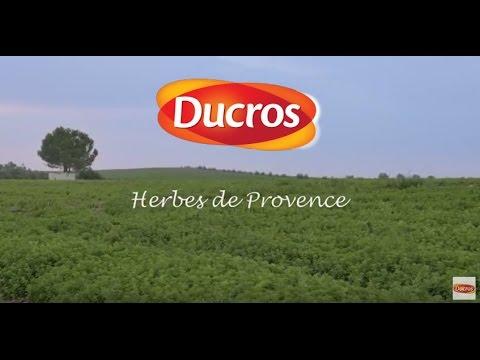 Herbes de Provence Classiques de Ducros