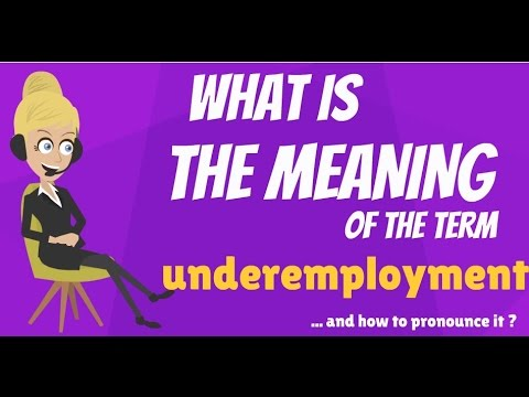 What is UNDEREMPLOYMENT? What does UNDEREMPLOYMENT mean? UNDEREMPLOYMENT meaning