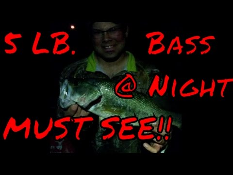 5+ Pound Bass Caught At Night (Must See)