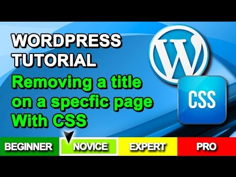 WordPress Tutorial - Hide / Remove The Title On A Specific Page With CSS