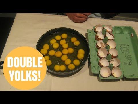Student cracked a dozen double-yolk eggs in a row
