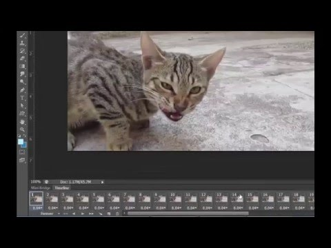 How To Make Animated GIF From Video in Photoshop CS6