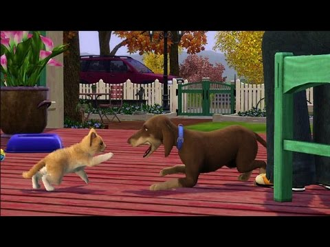 Sims 3 pets: cheats - ps3