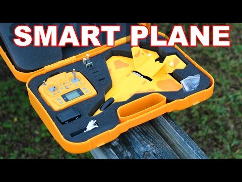 RC Smart Plane  Micro F-22 Jet Warbird - Auto Take Off & Stability Control RTF - TheRcSaylors