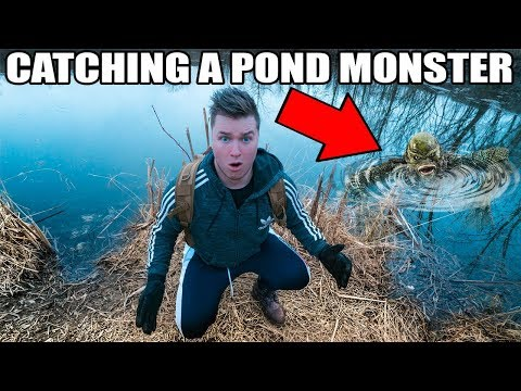 CATCHING A MONSTER IN POND 3AM!! 😱💧Pond Monster Caught On Camera